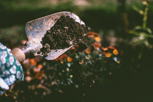 Τα Βήματα για τη δημιουργία του δικού σας κήπου